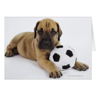 Cartão Filhote de cachorro de great dane com a bola de