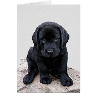Cartão Filhote de cachorro preto de Labrador
