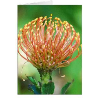 Cartão flor selvagem