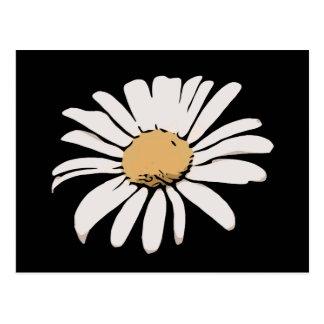 Cartão floral da margarida preta
