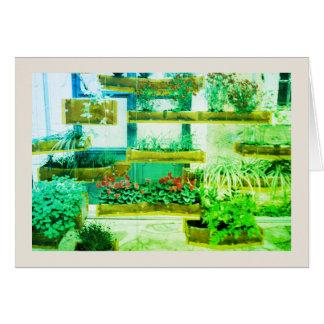 Cartão floral Venetian
