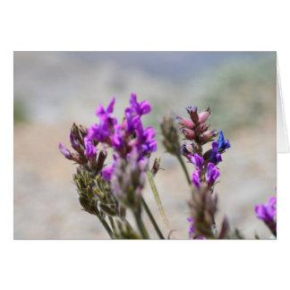 Cartão Flores selvagens roxas