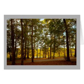 Cartão Floresta colorida do outono do lago landscape 38