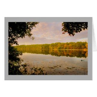 Cartão Floresta do outono do lago landscape 40 colorida