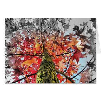 Cartão folhas de outono