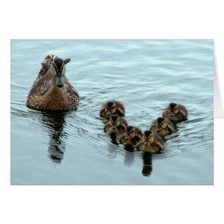 Cartão Formação do pato