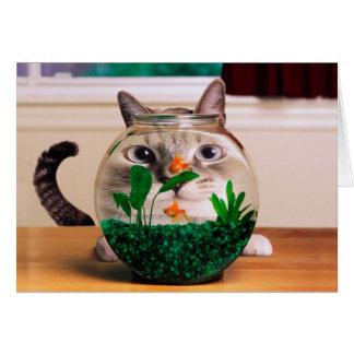 Cartão Gato e peixes - gato - gatos engraçados - gato