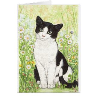 Cartão Gato preto e branco com margaridas