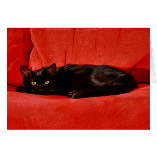 Cartão Gato preto Edgar