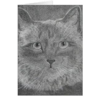Cartão Gato Siamese dos olhos bonitos