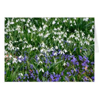 Cartão gotas da neve e flores azuis