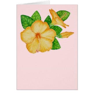 Cartão Hibiscus alaranjado