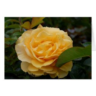 Cartão horizontal:  Camélia amarela