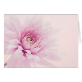 cartão horizontal vazio da flor