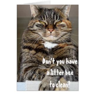 Cartão Humor engraçado limpo irritado da caixa de maca do