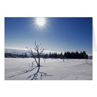 Cartão Inverno na selva negra