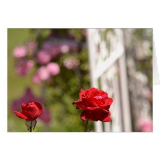 Cartão Jardim romântico dos rosas