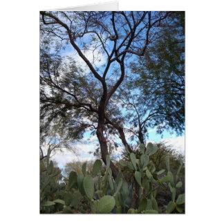 Cartão Jardins botânicos, Henderson, Nevada
