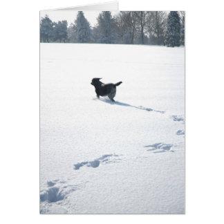 Cartão Jogos pretos de Labrador na neve