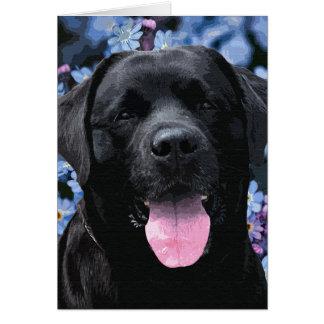 Cartão Labrador preto - esqueça-me não