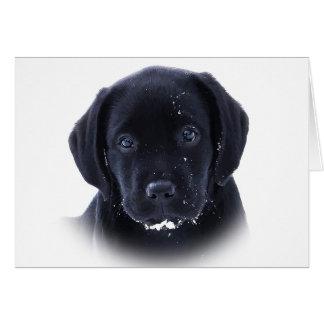 Cartão Labrador preto - filhote de cachorro da neve