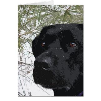 Cartão Labrador preto - pinhos Sparkling
