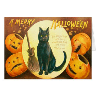 Cartão Lanterna de Jack O do gato preto da abóbora