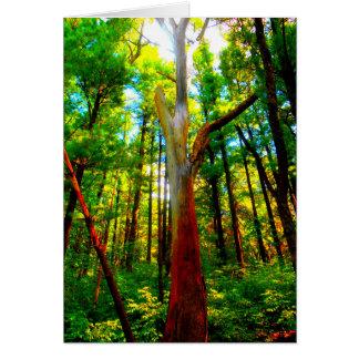 Cartão Latido de árvore colorido