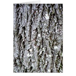Cartão Latido de uma árvore de hicória