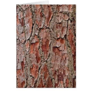 Cartão Latido em um pinheiro