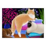 Cartão limpo da lavanderia do amor dos gatos