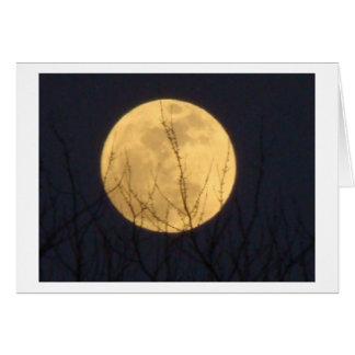 Cartão Luz para a maneira, Lua cheia