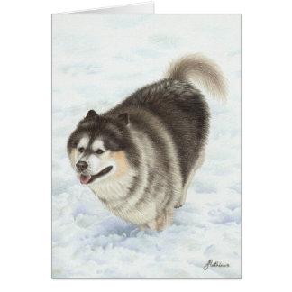 Cartão Malamute do Alasca que funciona através da neve