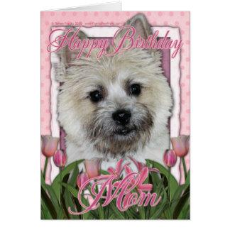 Cartão Mamã do feliz aniversario - monte de pedras - luz