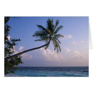 Cartão Mar e palmeira