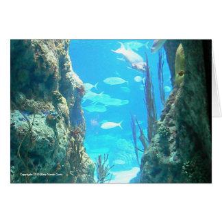 Cartão Maravilhas submarinas