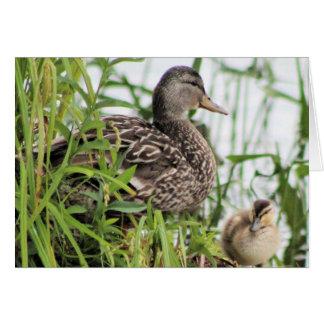 Cartão Momma & bebê