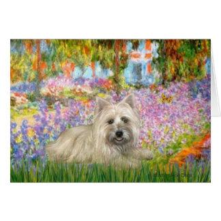 Cartão Monte de pedras Terrier 4 - jardim