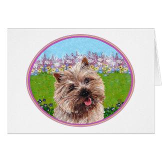 Cartão Monte de pedras Terrier em um jardim