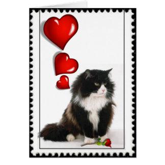 Cartão Namorados preto e branco do gato