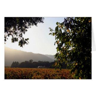 Cartão Napa Valley EUA