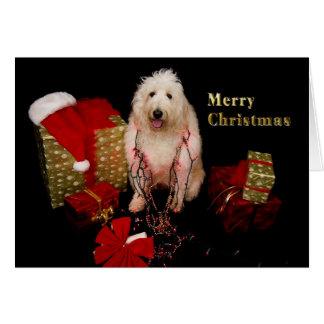 Cartão Natal - cachorrinho decorado