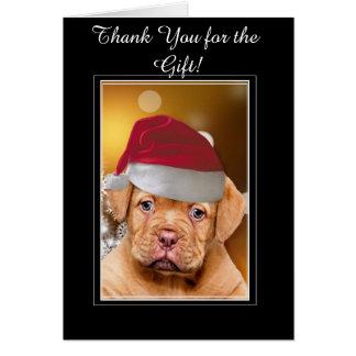 Cartão Natal Dogue de Bordéus