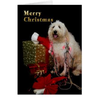 Cartão Natal - luzes da árvore no cachorrinho