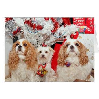 Cartão Natal sábio de três cachorrinhos