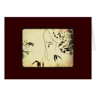 cartão natural das guloseimas 19