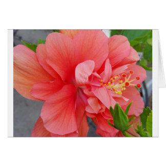 Cartão Notecard floral do primavera