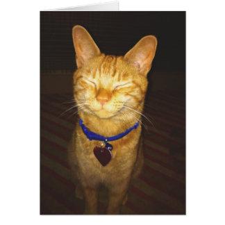 Cartão O aniversário do gato deseja o cumprimento