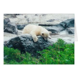 Cartão O urso Cub polar carda