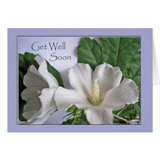 Cartão Obtenha o poço logo, o hibiscus branco, rosa de